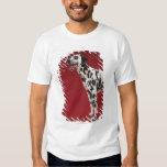 Dalmatian Tshirts