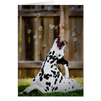 Dalmatian with bubbles card