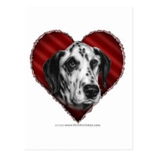 Dalmatian with Heart Postcard