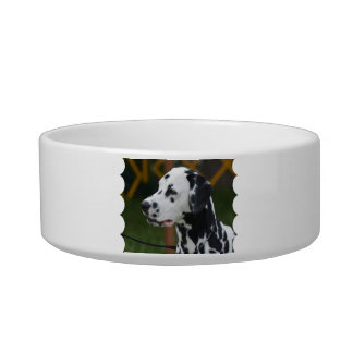 Dalmatian with Spots Bowl