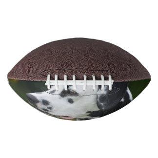 Dalmatian with Spots Football