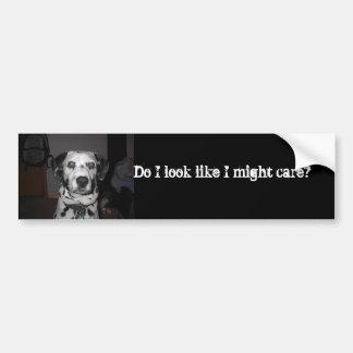 Dalmatians care bumper sticker