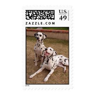Dalmatians Sunny Day Stamp
