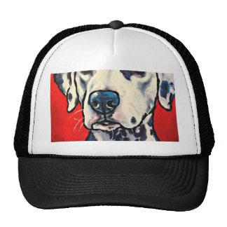 dalmation 02 trucker hat