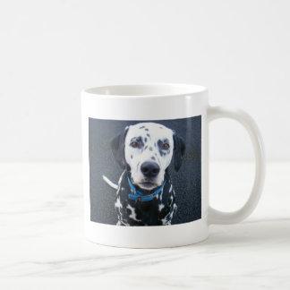 Dalmation Dog Dexter Mugs
