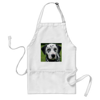 Dalmation Dog Dollys Face Standard Apron