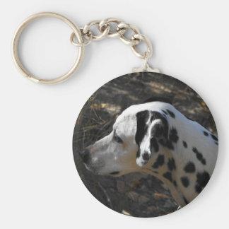 Dalmation Dog Portriate Basic Round Button Keychain