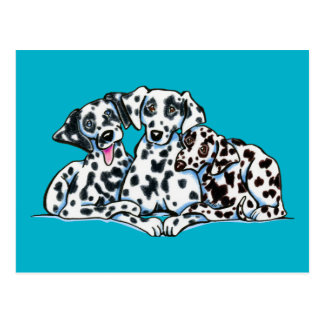 Dalmation Lover Postcard