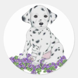 Dalmation Puppy Sticker