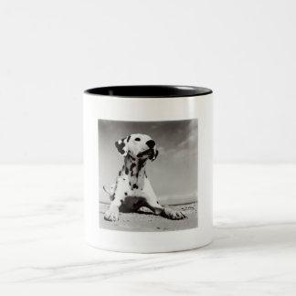 Dalmation Puppy Two-Tone Coffee Mug