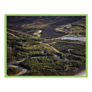 Dalton Highway crossing Bonanza Creek Postcard