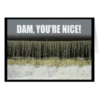 Dam, You're Nice! Thank You Card