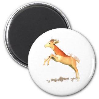 Dama Gazelle 2 Inch Round Magnet