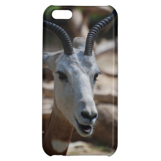 Dama Gazelle Cover For iPhone 5C
