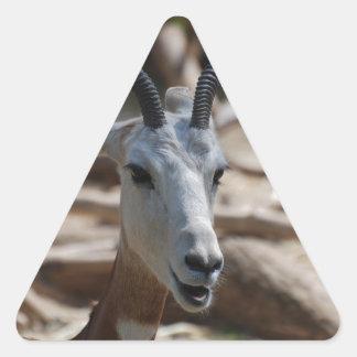 Dama Gazelle Triangle Sticker