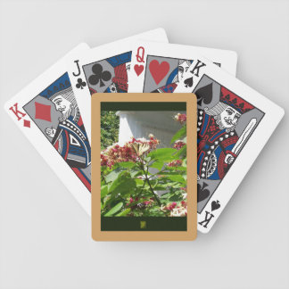 damaged beauty bicycle playing cards