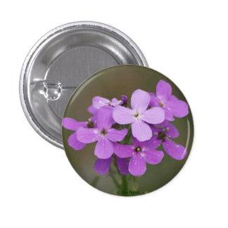 Damas púrpuras Rocket de los Wildflowers F0019 Pin Redondo De 1 Pulgada