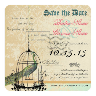 Damask Peacock Bird Cage Wedding Save the Date Invitation