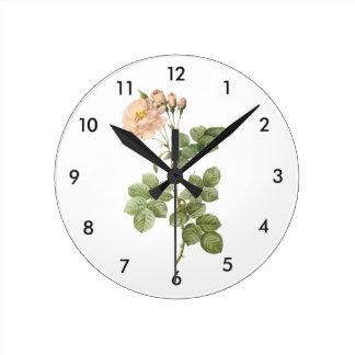damask rose (Rosa damascena aurora) by Redouté Round Clock