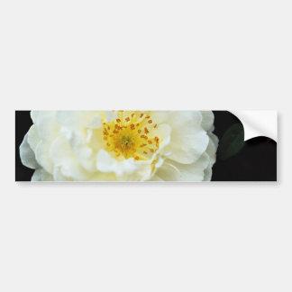 Damask White flowers Car Bumper Sticker