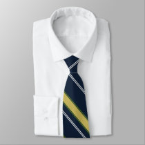 Dame Erin of Eire University Stripe Tie