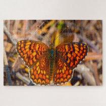 Damero Knapweed Butterfly. Jigsaw Puzzle