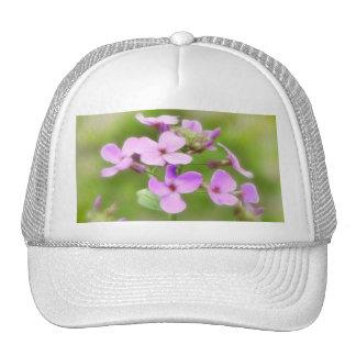 Dame's Rocket - Hesperis matronalis Trucker Hat