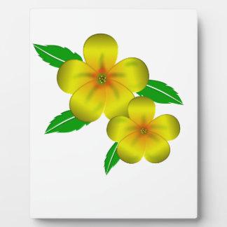 Damiana yellow flowers photo plaques