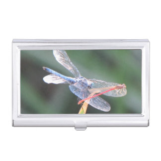 Damsel Fly Perched on Dragonfly Case For Business Cards