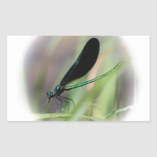 Damsel Fly Rectangular Sticker