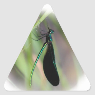 Damsel Fly Triangle Stickers