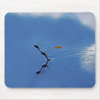 Damselflies reflection mouse pad
