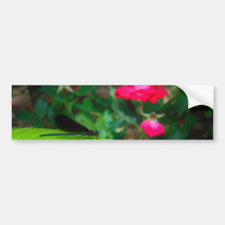 Damselfly and Rose Bumper Stickers