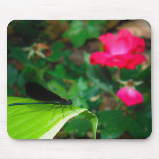 Damselfly and Rose Mouse Pads