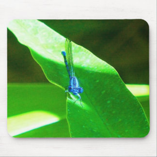 Damselfly Mouse Pads