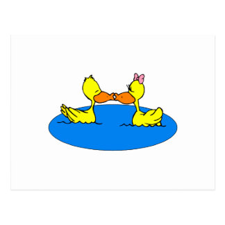 Dan & Din Duck Postcard