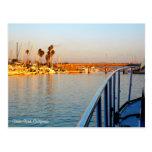 Dana Point Marina Postcard
