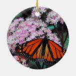 Danaus Plexippus de la mariposa de monarca masculi Ornamentos De Reyes Magos