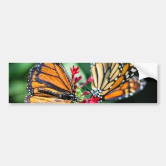 Danaus Plexippus del monarca Pegatina De Parachoque