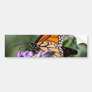 Danaus Plexippus del monarca Etiqueta De Parachoque