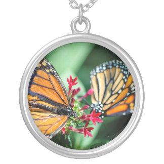 Danaus Plexippus del monarca Colgante Redondo