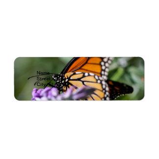 Danaus Plexippus del monarca Etiquetas De Remite