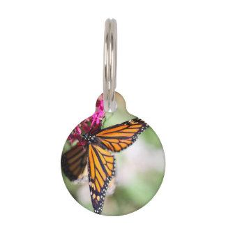 Danaus Plexippus del monarca Placa De Mascota
