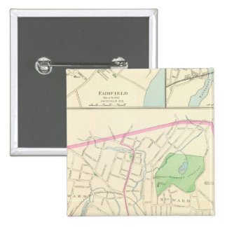 Danbury Pinback Button