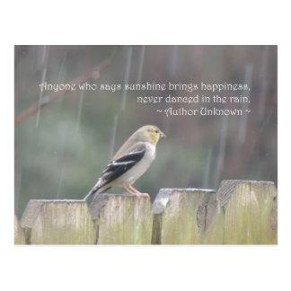 Dance in the Rain Goldfinch Postcard