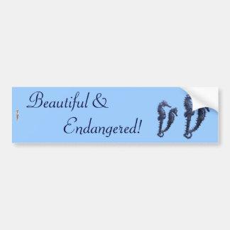Dance Of The Seahorses (Blue) Car Bumper Sticker