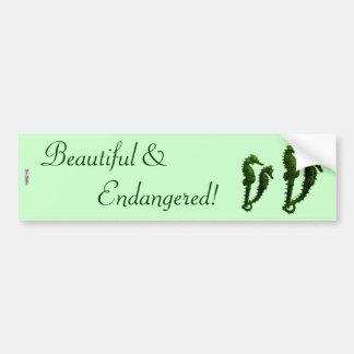 Dance Of The Seahorses (Green) Bumper Sticker