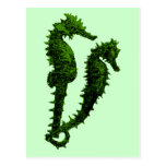 Dance Of The Seahorses (Green) Postcard