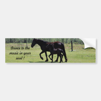 Dance to the music in your soul bumper sticker