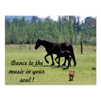 Dance to the music in your soul postcard